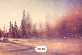 "Фон стена ""Winter wall №4"""